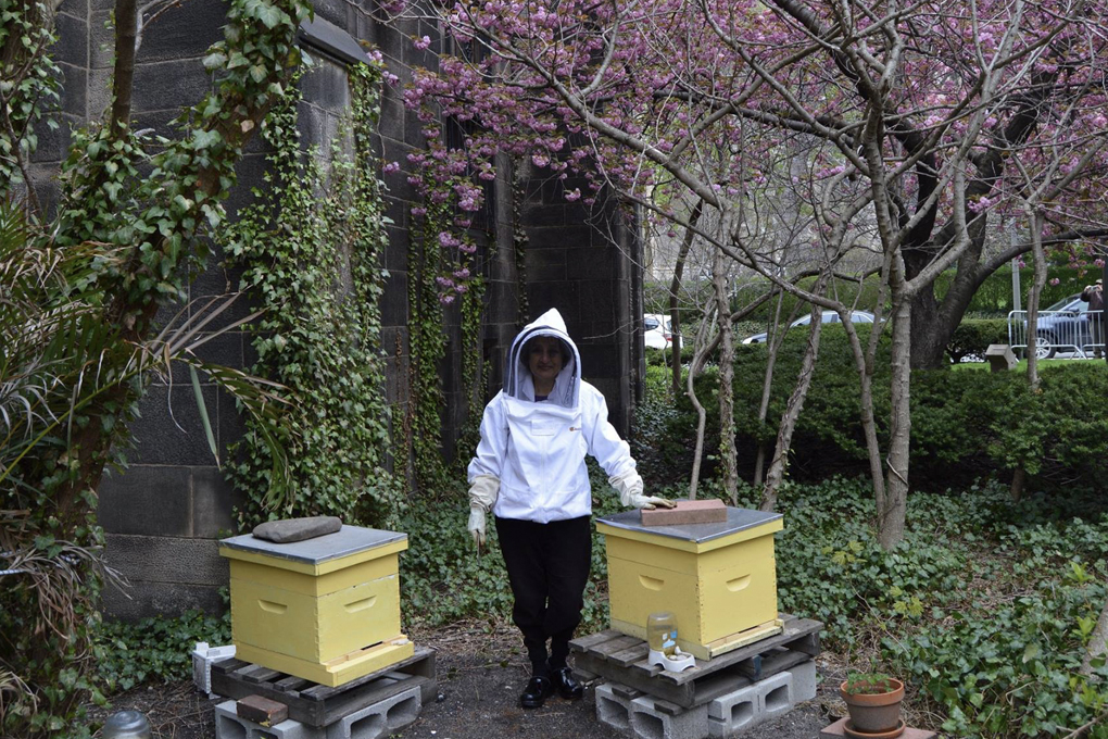 The Bee Conservancy's Apiary at the Cathedral of St. John the Divine in New York City